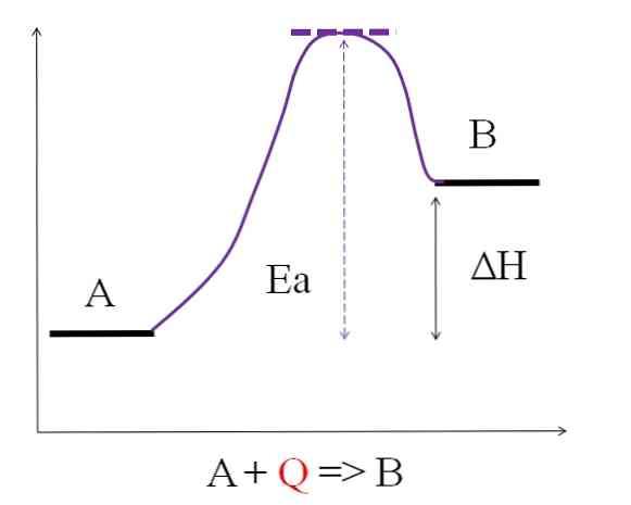 reaccin-endotrmica-caractersticas-ecuaciones-y-ejemplos_2.jpg